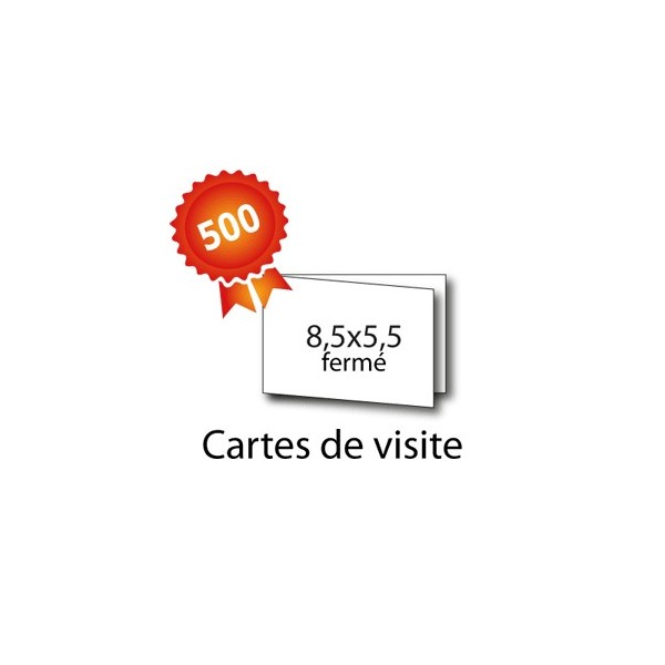 500 Cartes De Visite
