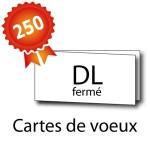 250 Cartes de voeux double volet DL 21x10 / 42x10 - 3 jours