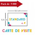 5000 Cartes de visite standards - 10 jours