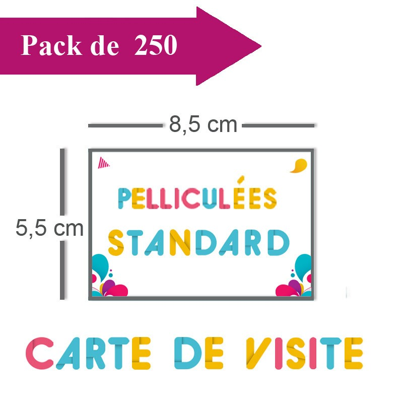 Impression 250 Cartes De Visite Standards 85x55 Pellicules
