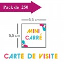 250 Cartes de visite mini carré - 2 jours