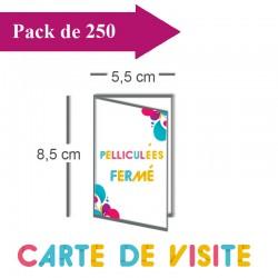 250 Cartes De Visite Double Volet 55x85 11x85 Pellicules