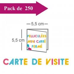 250 Cartes de visite double volet 5,5x5,5 / 11x5,5 pelliculées - 8 jours