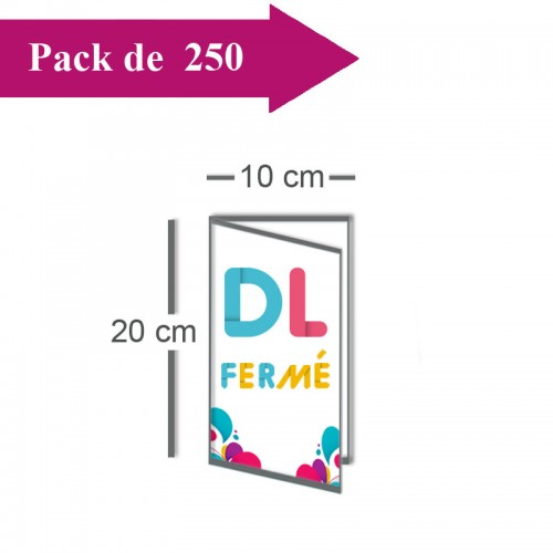 250 Dépliants double volet DL fermé (10x20) / Carré ouvert (20x20) - 3 j