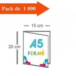 1000 Dépliants double volet A5 fermé (15x20) / A4 ouvert (30x20) - 3 j