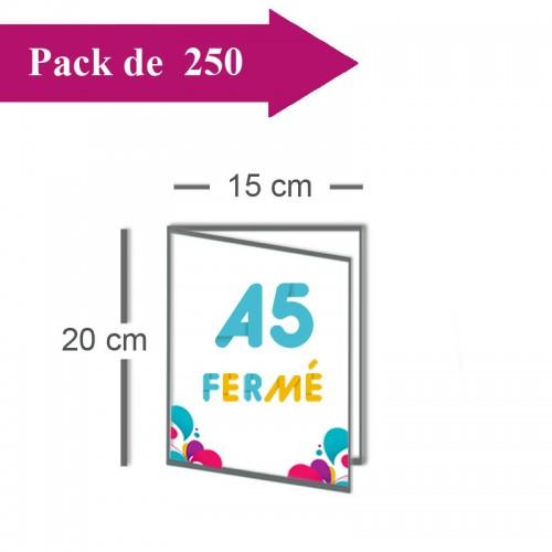 250 Dépliants double volet A5 fermé (15x20) / A4 ouvert (30x20) - 3 j