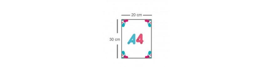 Affiche A4 (20x30cm)