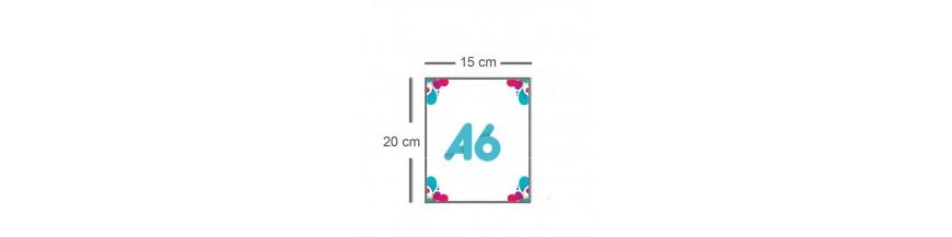Flyer A6 (10x15cm)