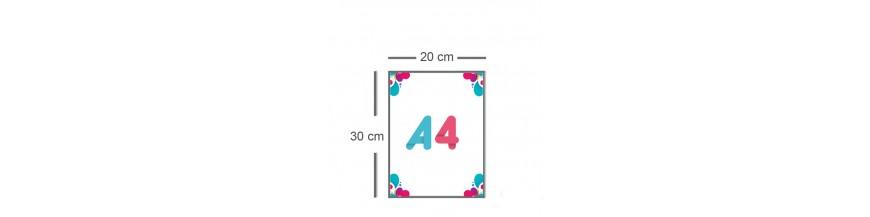 Flyer A4 (20x30cm)